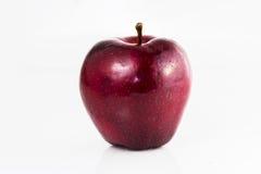Pomme rouge sur un fond blanc Images stock