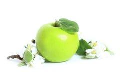 Pomme verte avec une lame Photographie stock libre de droits