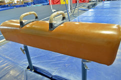 Pommel Horse side view Stock Photography