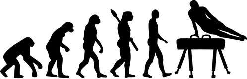Pommel konia ewolucja ilustracji