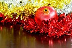 Pommes à la fin vers le haut de la macro photographie avec la lentille du micro 105mm de Nikkor Photographie stock