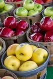Pommes à vendre Images stock