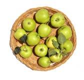 Pommes 0014 Photos libres de droits