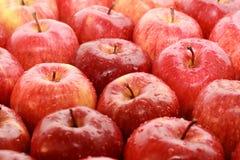 pommes Images libres de droits