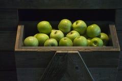 pommes Photographie stock libre de droits