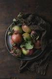 Pommes avec des feuilles Photos libres de droits
