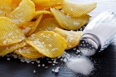 Pommes chips et sel Image libre de droits