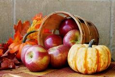 Pommes d'automne Photos libres de droits
