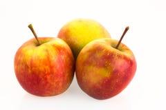Pommes d'isolement sur le fond blanc Image libre de droits