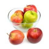 Pommes d'isolement sur le fond blanc Photos stock