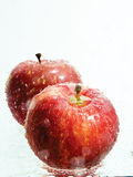 Pommes dans l'eau Images stock