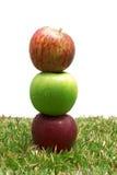 Pommes dans l'herbe Image libre de droits