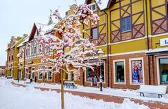 Pommes dans la neige Image libre de droits