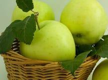 Pommes dans un panier Photos libres de droits