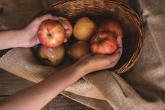 Pommes dans un panier en osier images libres de droits