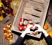 Pommes dans une boîte en bois sur le foin sur le fruit v de fruit de potiron d'herbe sèche Images stock