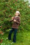 Pommes de cueillette de fille Photo libre de droits