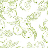 Pommes de dessin de modèle et branche monochromes de pomme Images stock