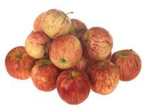 Pommes de gala photos stock