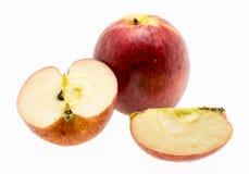 Pommes de gala au-dessus du fond blanc Photo stock