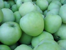 Pommes de Lodi, meilleur utilisé pour la cuisson photos stock