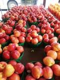 Pommes de plaza photos libres de droits