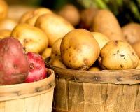 Pommes de terre au marché de l'agriculteur Photo stock