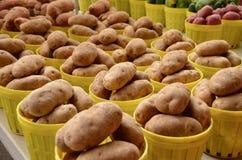 pommes de terre blanches photos stock