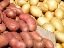 Pommes de terre blanches et rouges 2011 de Tel Aviv Images libres de droits