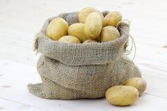 Pommes de terre crues photo libre de droits