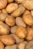 Pommes de terre crues Photographie stock libre de droits