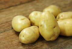 Pommes de terre crues Image stock