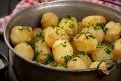 Pommes de terre cuites au four de bébé Images libres de droits