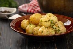 Pommes de terre cuites au four de bébé Images stock