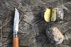 Pommes de terre cuites au four dans la campagne Photographie stock libre de droits