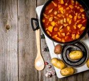 Pommes de terre cuites avec de la viande et des épices dans un cuiseur électrique sur le fond en bois L'espace libre pour le text Photo libre de droits