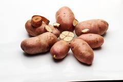 Pommes de terre d'ail et une ceinture Images libres de droits