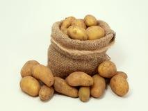 Pommes de terre dans le sac Photo libre de droits