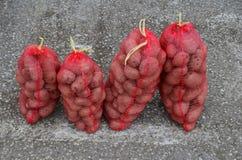 Pommes de terre dans les sacs Images stock