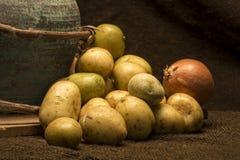 Pommes de terre de bébé Image libre de droits