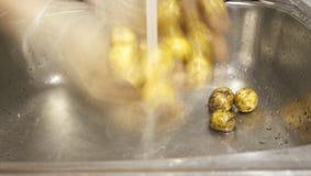 Pommes de terre de lavage Photo stock