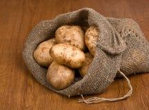 Pommes de terre de moisson dans le sac à toile de jute, de côté photographie stock