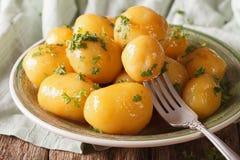 Pommes de terre de primeurs caramélisées faites maison en gros plan d'un plat Photographie stock libre de droits