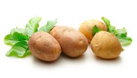 Pommes de terre entières fraîches image libre de droits