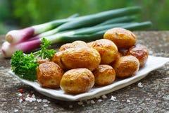 Pommes de terre faites maison de rôti Photo libre de droits