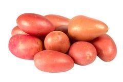 Pommes de terre fraîches Images libres de droits