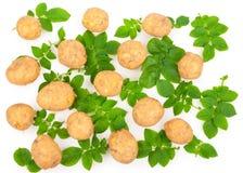 Pommes de terre jaunes avec des lames Photo libre de droits
