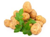 Pommes de terre jaunes avec des lames Photographie stock libre de droits