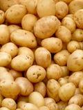 Pommes de terre organiques Image libre de droits