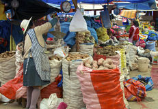 Pommes de terre péruviennes Photo stock